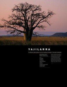 yajilarra cover